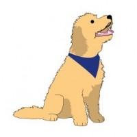 Canine Skills